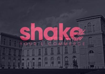 Teaser Shake 2015